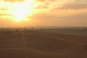 Abu Dhabi Jan 2015-10
