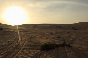 Abu Dhabi Jan 2015-12