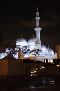 Abu Dhabi Jan 2015-5