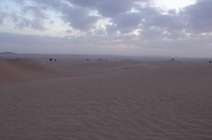 Abu Dhabi Jan 2015-8