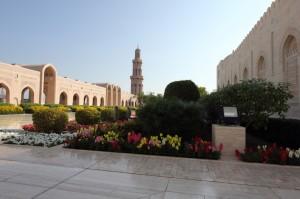 Oman Jan 2015-69