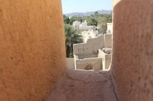 Oman Jan 2015-74